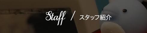 Staff  / スタッフ紹介